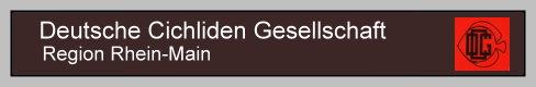 Regionale Seite der Deutschen Cichliden Gesellschaft