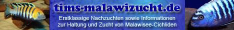 Tims Malawizucht